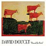 David Doucet Quand J'ai Parti
