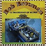 Bob Brozman A Truckload Of Blues