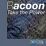 Racoon Take The Power