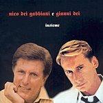 Nico Dei Gabbiani Insieme