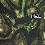 Citadel Pluies Acides