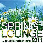 V.A. Spring Lounge 2011 (Sounds Like Sunshine)