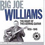 Big Joe Williams The Giant Of The 9 Strings Guitar