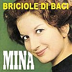 Mina Briciole DI Baci