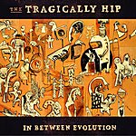 The Tragically Hip In Between Evolution