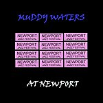 Muddy Waters Live From Newport