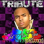 The Singles She Ain't You (Chris Brown Tribute) - Deluxe