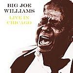 Big Joe Williams Live In Chicago
