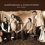 Alison Krauss & Union Station Paper Airplane