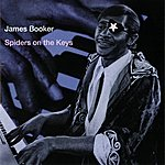 James Booker Spiders On The Keys: Live At The Maple Leaf Bar