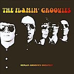 The Flamin' Groovies Replay: Groovies Greatest, Vol. 2