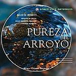 Laurent Dury Atmosferas Naturales - Pureza Del Arroyo