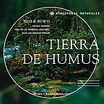 Dominique Verdan Atmosferas Naturales - Tierra De Humus