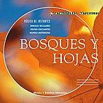 Thierry Noritop Atmosferas Naturales - Bosques Y Hojas