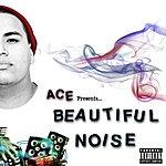 Ace Beautiful Noise