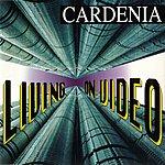 Cardenia Living On Video Mediteria Remix