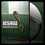 Joshua Prohibited Love