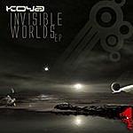 Koya Invisible Worlds