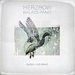 Merzbow Ducks: Live In NYC