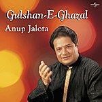 Anup Jalota Gulshan -E- Ghazal