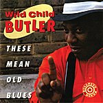 George 'Wild Child' Butler These Mean Old Blues