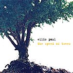 Ellis Paul The Speed Of Trees