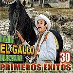 Lalo El Gallo Elizalde 30 Primeros Exitos