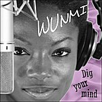 Wunmi Dig Your Mind