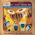 Vijay Raghav Rao The Fantasy Of Indian Drums