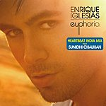 Enrique Iglesias Heartbeat - India Mix