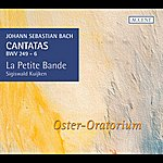 Sigiswald Kuijken Bach: Cantatas For The Complete Ligurgical Year, Vol. 13