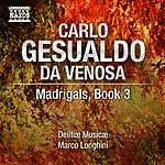 Delitiae Musicae Gesualdo: Madrigals, Book 3
