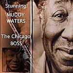 Muddy Waters Giant Muddy