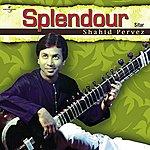 Ustad Shahid Parvez Splendour