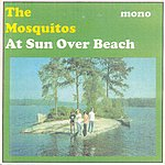 The Mosquitos At Sun Over Beach