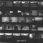The Kestrels The Solipsist