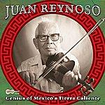 Juan Reynoso Genius Of Mexico's Tierra Caliente