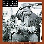 Big Joe Williams Shake Your Boogie