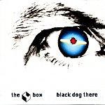 B-O-X Black Dog There