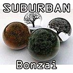Suburban Bonzai