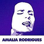 Amália Rodrigues A Rainha Do Fado