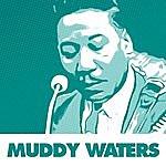 Muddy Waters 37 Essential Blues Standards By Muddy Waters
