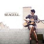 Sophie Barker Seagull