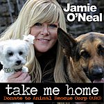 Jamie O'Neal Take Me Home - Single