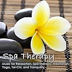 Planet Earth Spa Therapy: Relaxation, Spa Therapy, Meditation, Yoga, Tai-Chi, Tranquility