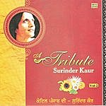 Surinder Kaur Tribute To Surinder Kaur Vol 2