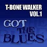 T-Bone Walker Got The Blues Vol 1