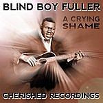 Blind Boy Fuller A Cryin Shame