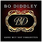 Bo Diddley Gone But Not Forgotten