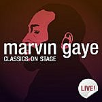 Marvin Gaye Classics On Stage